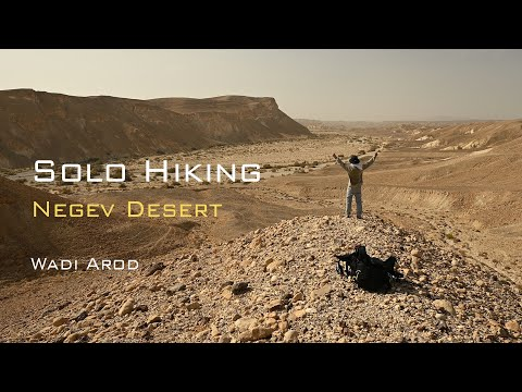 Solo Hiking in the Desert   Wadi Arod   Geology, Wild life, Relaxation
