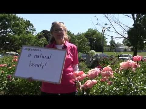 Our Oshawa is a Natural Beauty featuring the Oshawa Peony Festival