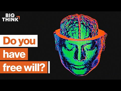 Is free will an illusion?   Uri Maoz   Big Think