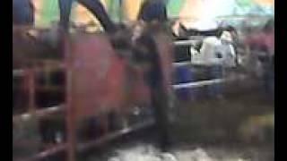 aMONTA DL 30 30 de San Francisco Huehuetlan Oaxaca