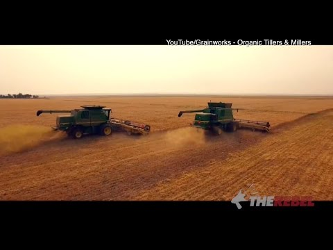Western grain farmers get the shaft from federal Liberals