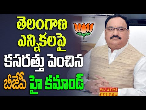 BJP High Command Speed up Election Campaign works for Telang