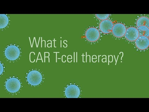 CAR T-cell therapy for cancer treatment: How it works