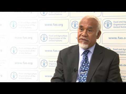 Remarks By Semisi Tauelangi Fakahau, Minister Of The Kingdom Of Tonga