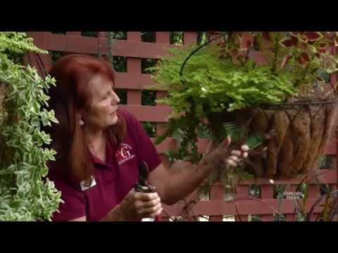Tulsa County Master Gardeners