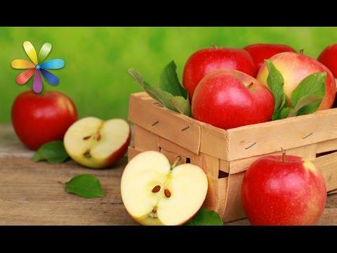 Как сохранить яблоки сочными и свежими до весны – Все буде добре. Выпуск 882 от 20.09.16
