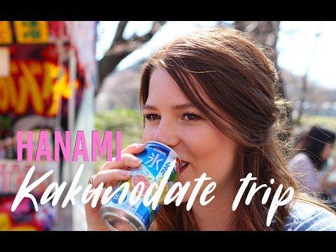 Hanami celebration in Kakunodate - AKITA travel