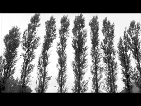 Cymbal (Dulcimer, Santur, Hackbrett, Zymbal, Cimbalom) + Piano