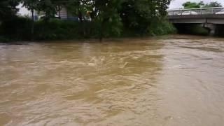 自宅近くの川が氾濫してます!
