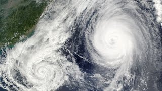 Warning: Don't Dropship Hurricane Repair Supplies!