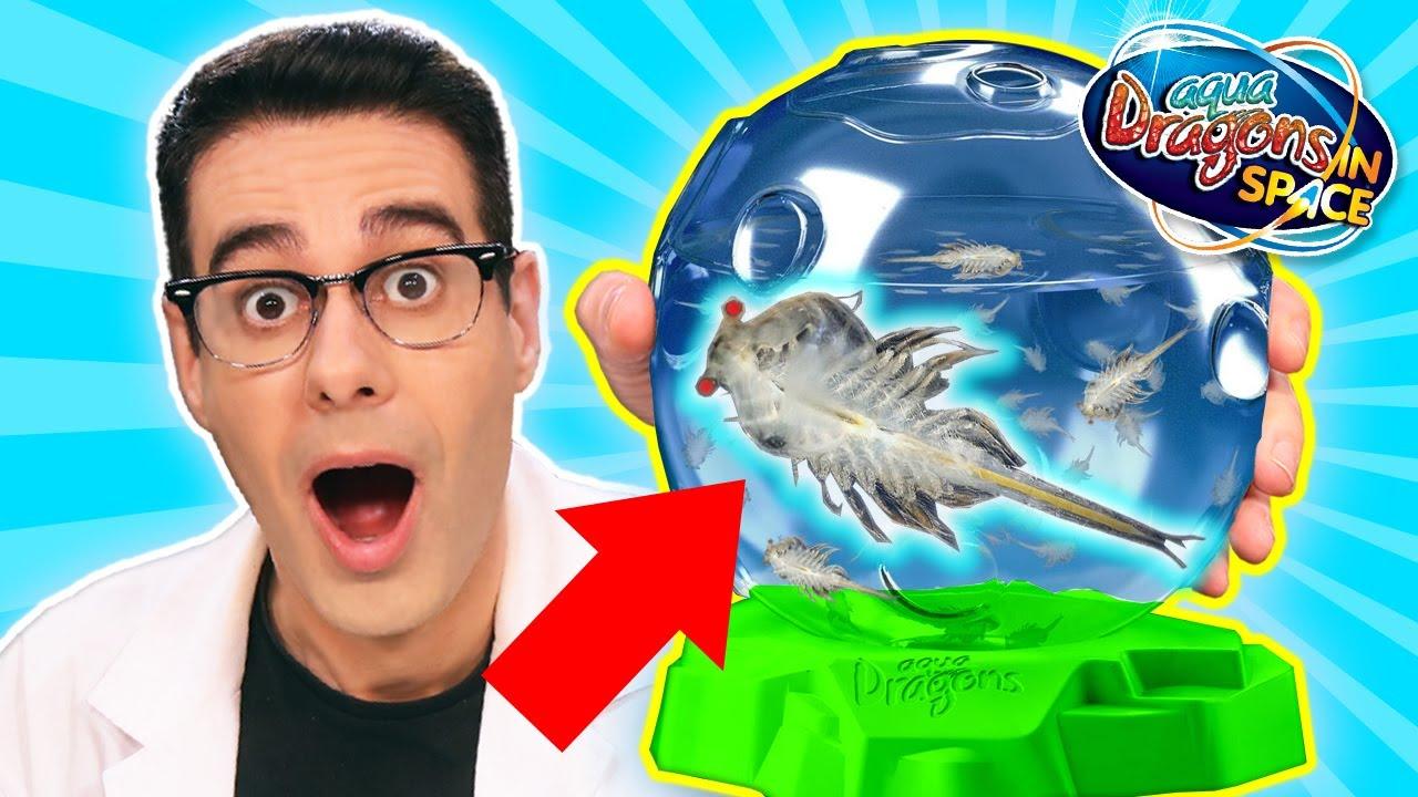 DRAGONES ACUÁTICOS DEL ESPACIO Mis nuevas mascotas Aqua Dragons | Curiosidades con Mike - T4 E26