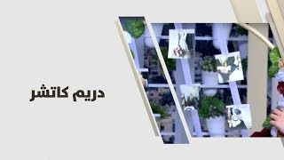 يافا حمدان - دريم كاتشر