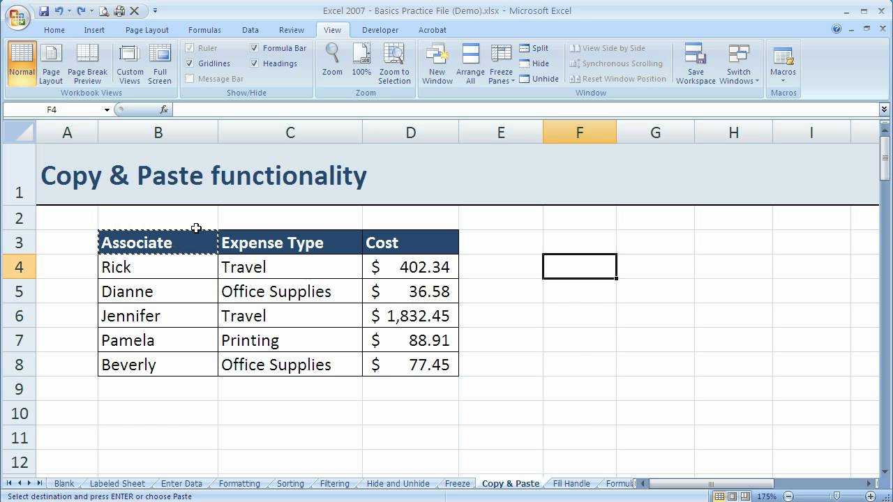 How to use basic Copy and Paste in Excel 2007 (Excel 07-018)