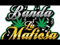 Banda La Mafiosa Intro El sinaloense,La cuochi,Corrido de Mazatlan