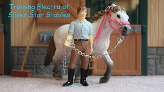 Training Electra at Silver Star Stables