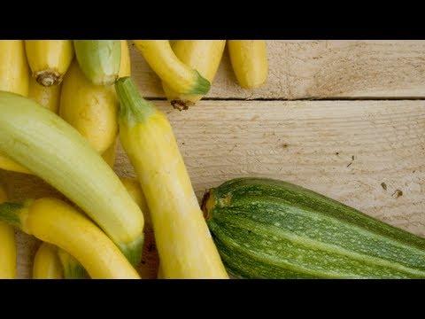 Summer Squash Recipes - Farm to Fork: America's Heartland
