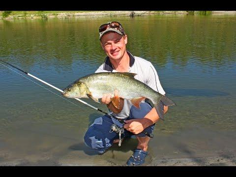 рыбалка в курске на сейме видео