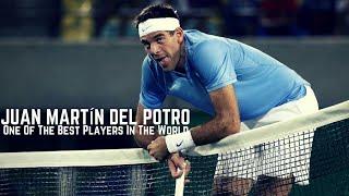 Tennis. Juan Martin del Potro #Best of the Best #Funny