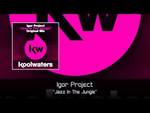 Igor Project - Jazz In The Jungle (Radio Edit)