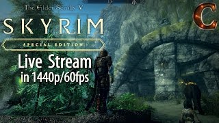 Skyrim Special Edition for PC in 1440p and 60fps! Khajiit Sneakthief, Level 5, Part 3!