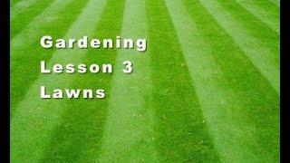 Gardening Lesson 3 Lawns