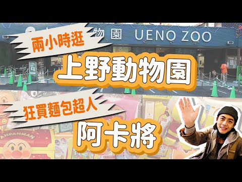 東京上野一日遊!速逛上野動物園!阿卡將狂買麵包超人!日本東京上野旅遊Vlog(下) 2019日本東京行 家庭兄弟