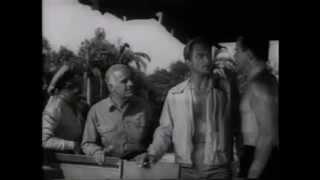 Der Schrecken vom Amazonas (Original US-Trailer - 1954)
