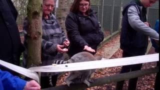 Will's Wild Animal Encounters at Hoo Farm - 1/11/2015 04