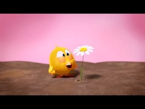 Where is Chicky? Folgen #37🐤| Karikatur Kinderfilme 2018 | Movies For Kids