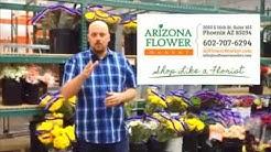 Step Inside Arizona Flower Market Cooler