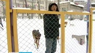 Вести-Хабаровск. Специальная площадка для выгула домашних животных