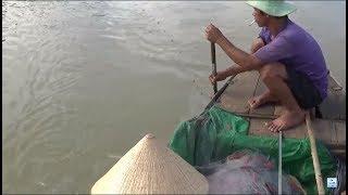 Đi bắt cá - hôm nay trúng đậm - ngồi gỡ cá không cũng đủ mệt rồi