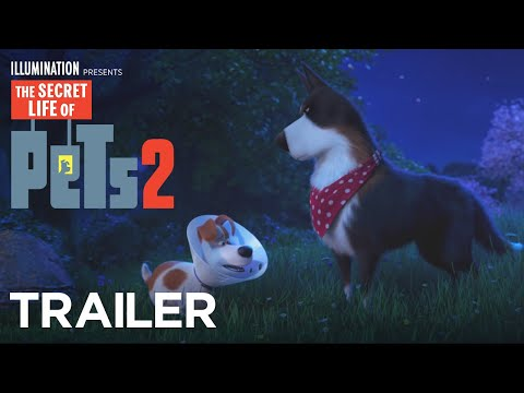 The Secret Life Of Pets 2 – The Rooster Trailer [HD]