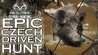 EPIC Wild Boar Hunt in the Czech Republic