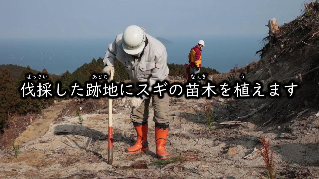 糸島産材活用協議会のプロモーションビデオ製作しました。