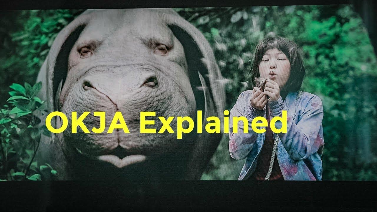 OKJA Movie Hidden Meanings Explained! - YouTube