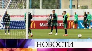 Журналисты, болельщики и игроки высоко оценивают уровень подготовки к ЧМ по футболу FIFА 2018.