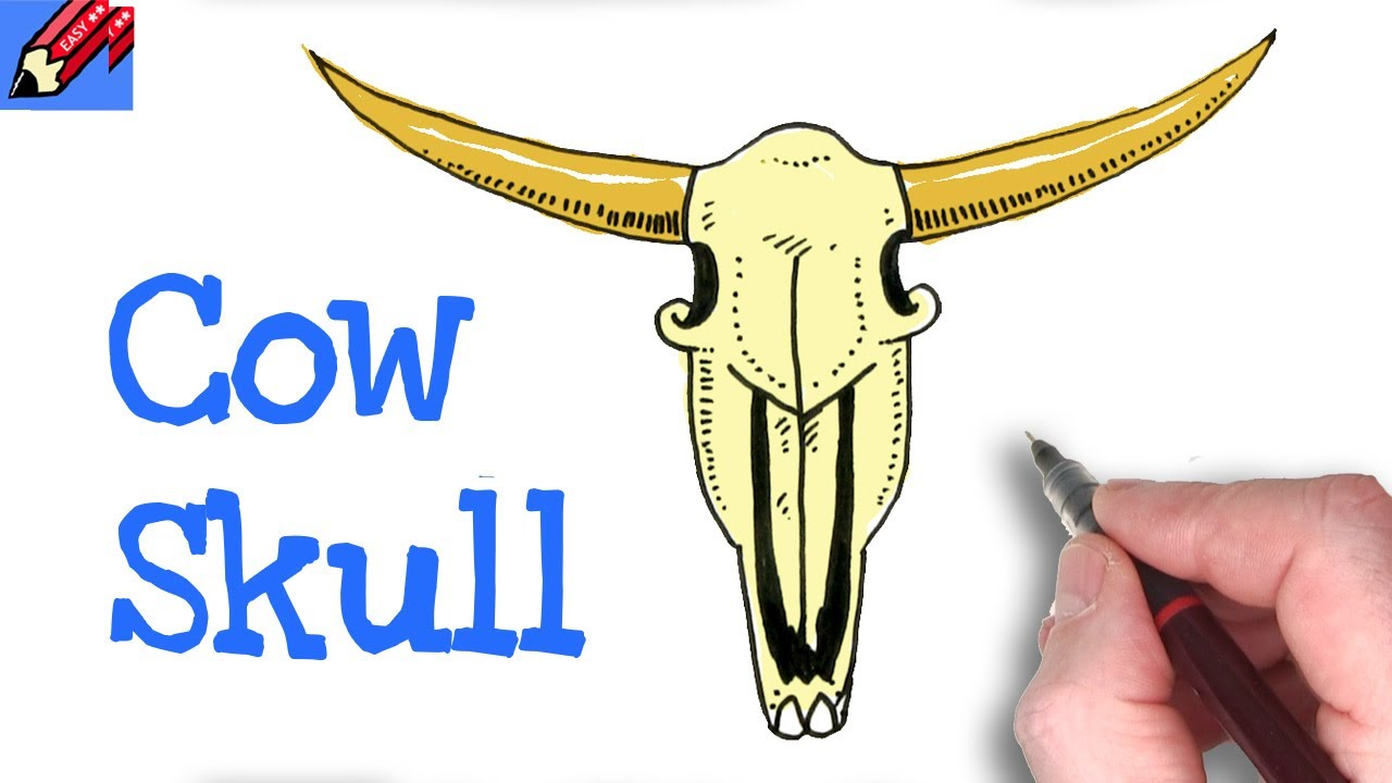 HOW TO DRAW A COW SKULL EASY   Step by Step - YouTube