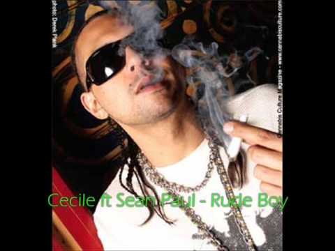 Sean Paul - Can You Do the Work (Featuring Ce'Cile)