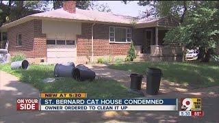 "St. Bernard's ""cat House"" Stinks"