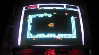 Taito Zoo Keeper Arcade Game Review - Zookeeper - 1982 TAITO
