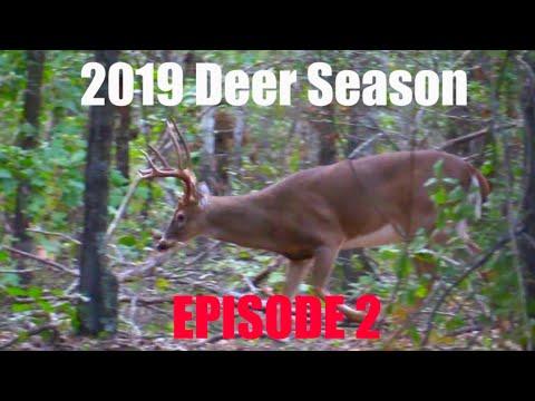 STUD 8 POINT! 2019 Deer Season- Episode 2. Self-Filmed Bowhunting