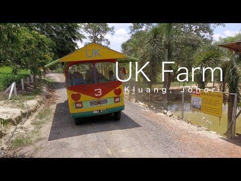 UK Farm - Kluang Johor