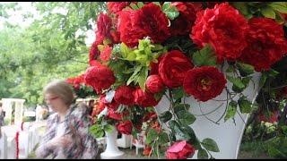 Фестиваль садов и цветов посвящается розе (новости)