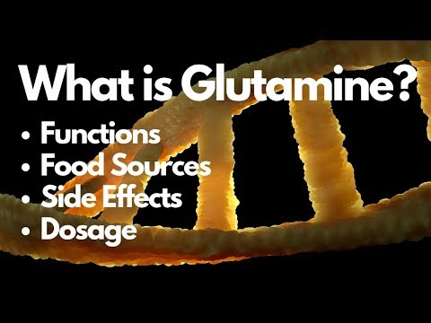 What is Glutamine? Its Function, Food Source & Side Effects