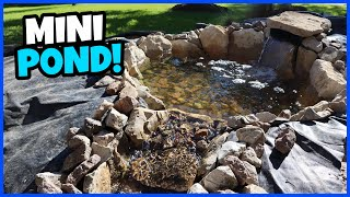 Building a New Mini-Pond & Waterfall!