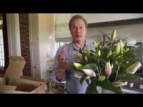 P. Allan Smith showing the best way to arrange and care for our lilies.