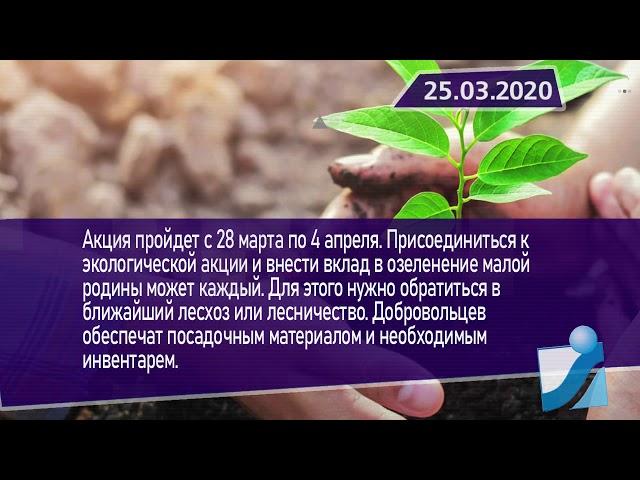 Новостная лента Телеканала Интекс 25.03.20.