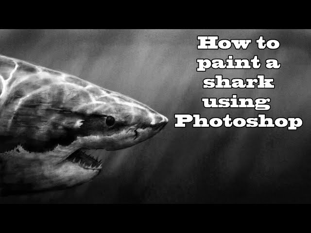 HOW TO DIGITALLY PAINT A SHARK USING PHOTOSHOP