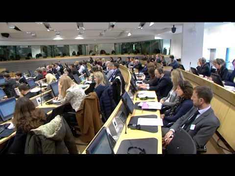 Conference Innovation Unions, Committee of the Regions (Brussels, 27/11/13), summary video